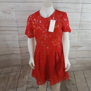 LUSH Red Embroidered Lace Sheath Dress Dd34